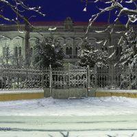 Сельхозтехникум ( зимняя ночь), Белгород-Днестровский