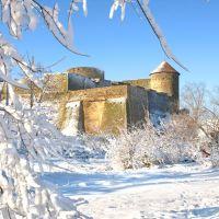 Февральская крепость 2010 г., Белгород-Днестровский