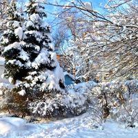 Снежный уголок города., Белгород-Днестровский