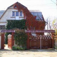 my home :), Беляевка