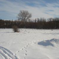 Zima, Беляевка