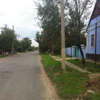 Ул. Мира ведет в центр, Березовка