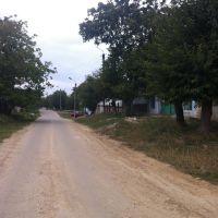 Вдоль дороги.., Березовка