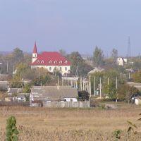 Вид на Березовку с противоположного берега Тилигула, Березовка