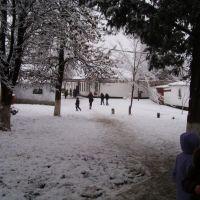 Школьный двор (2), Березовка