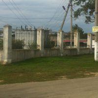 Забор воскресного базара, Березовка