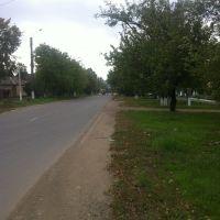 Дорога в центр города, Березовка