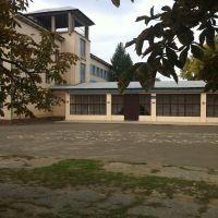 Общеобразовательная школа №3 в Березовке, Березовка