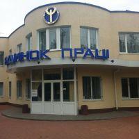 Бюро трудоустройства, Березовка