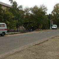 Остановка возле главного входа в поликлинику, Березовка