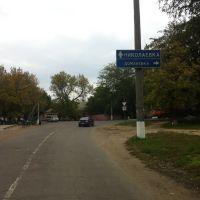 Указатели на Николаевку и Доманевку, Березовка