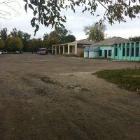 Заходим на автовокзал, Березовка