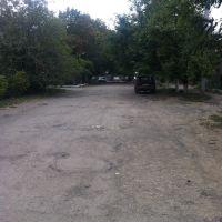 Отсюда начинается ул. Пушкинская, Березовка