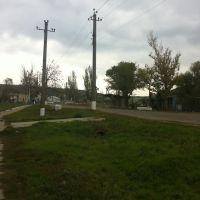 Вид вдоль дороги на Одессу, Березовка