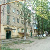 61, Болград