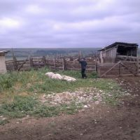 Юрьевка июнь 2010, Бородино