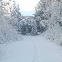 02.02.2010, Великодолининское