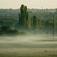 Утро туманное 2, Великодолининское