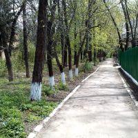 Дорожка в школу, Великодолининское