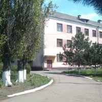Возле школы, Великодолининское