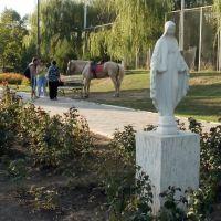 В парке, Ильичевск