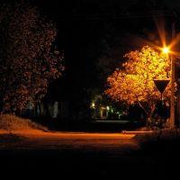 ночь, Килия