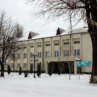 Райсовет и районная администрация., Кодыма