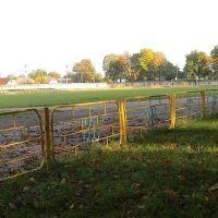 стадіон Колос (Кодима), Кодыма