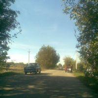 Дорога в Кодыму, Кодыма