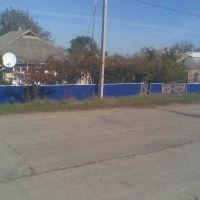 Синий Забор, Кодыма