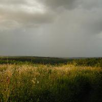 Краєвид, Кодыма