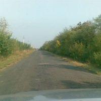 летняя дорога, Коминтерновское