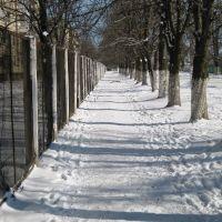 Улица Самборского, Котовск