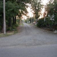 Садова, Любашевка