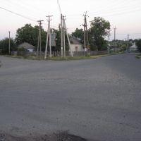 Розвилка доріг, Любашевка