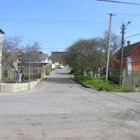 Вверх по ул. Горького, Овидиополь