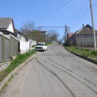 На возвышенность (ул. Горького), Овидиополь
