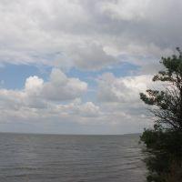 Днестровский лиман, Овидиополь