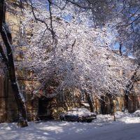 Красота, Одесса
