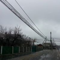 20140120 - Південна зима прийшла без запрошень;), Раздельная