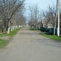 20140324 - Весна у Чобручі прийшла..., Раздельная