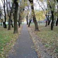 Парк, Раздельная