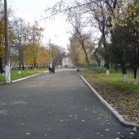 Прогулка в парке, Раздельная