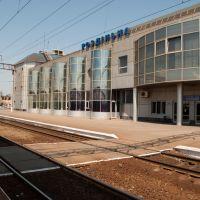 Вокзал Раздельная, Раздельная