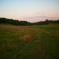 Поляна возле леса, Раздельная