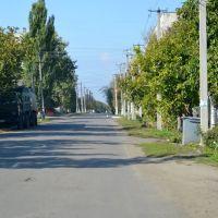 Котовського вулиця/Kotovkyi street -2- 20131006, Раздельная