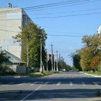 Котовського-Леніна кут/Lenin street - 20131006, Раздельная