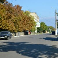 Леніна вулиця, поліклініка/Lenin street - 20131006, Раздельная