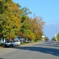 Леніна вулиця/Lenin street - 20131006, Раздельная