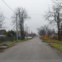 20131123-вул. Московська, Раздельная